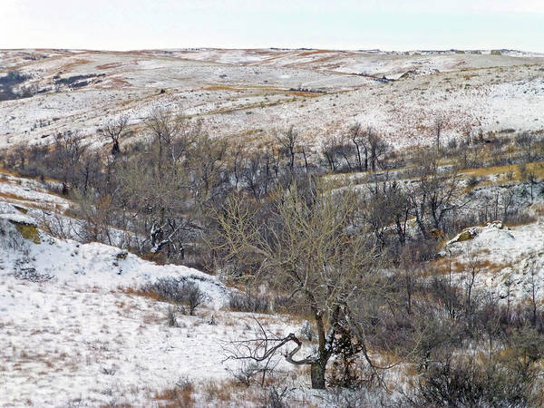 Photograph - Western Edge Winter Hills by Cris Fulton