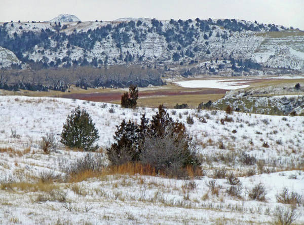 Photograph - Western Edge Winter River by Cris Fulton