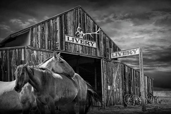Wall Art - Photograph - Western Horses At The Livery Stable In Black And White by Randall Nyhof