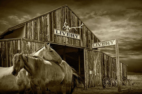Wall Art - Photograph - Western Horses At The Livery Stable In Sepia Tone by Randall Nyhof