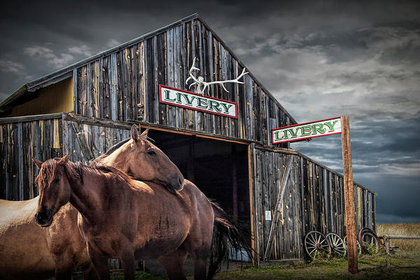 Wall Art - Photograph - Western Horses At The Livery Stable by Randall Nyhof