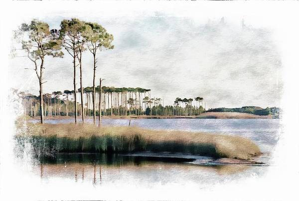 Grayton Beach Photograph - Western Lake In Soft Color by Toni Abdnour