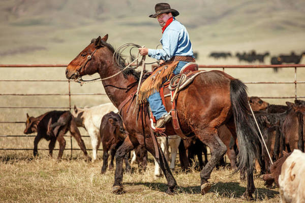 Wall Art - Photograph - Western Wrangler by Todd Klassy