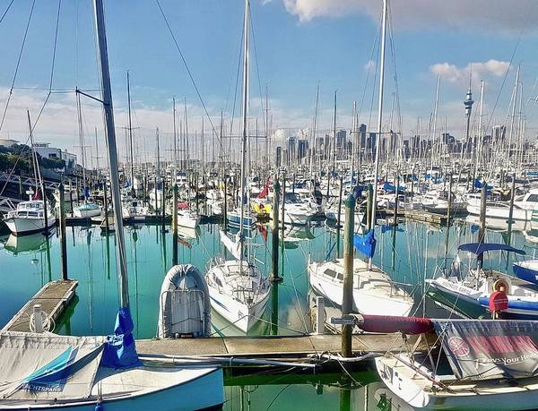 Photograph - Westhave Marina Auckland Cbd by Clive Littin