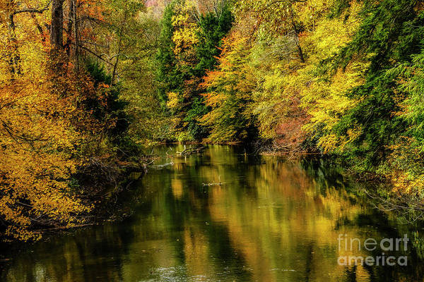 Photograph - Wet Autumn Day Gauley River by Thomas R Fletcher