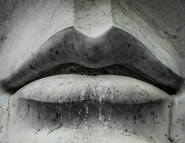 Wall Art - Photograph - Wet Lips by Lora J Wilson