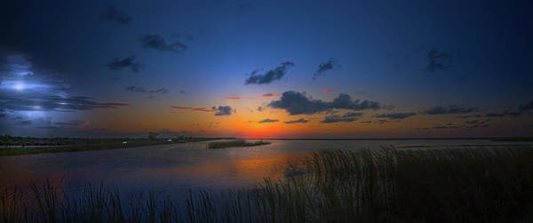 Wall Art - Photograph - Wetlands Magic by Mark Andrew Thomas