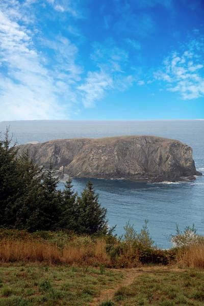 Photograph - Whale Head Rock On Pacific Coast by Steve Estvanik