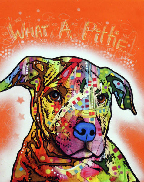 Wall Art - Painting - What A Pittie by Dean Russo Art