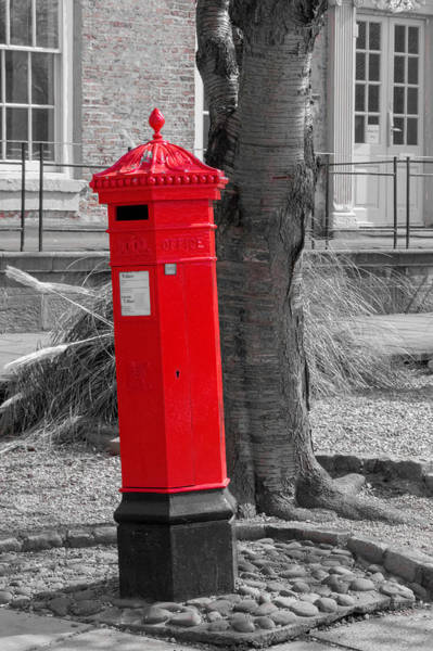 Photograph - What Is In The Mailbox? by Chris Coffee