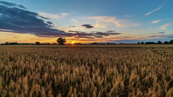 Photograph - Wheat Field Sunset by James Billings