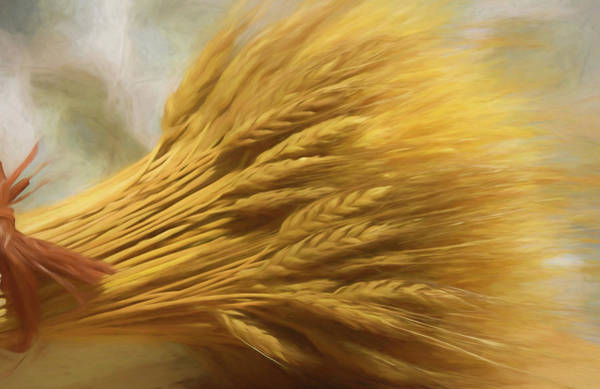 Mixed Media - Wheat by Pamela Walton