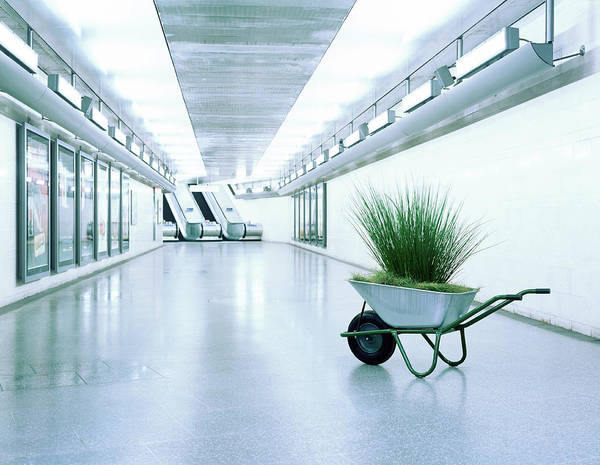 Out Of Context Photograph - Wheelbarrow Full Of Grass In Corridor by Kelvin Murray