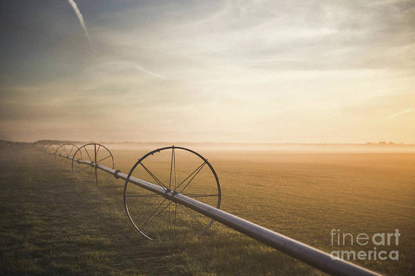 Wall Art - Photograph - Wheels On Field At Sunrise, Long by Chris Amodei