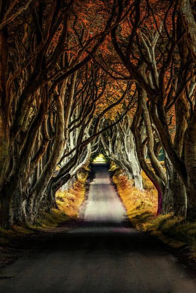 Photograph - When Autumn Comes by Jaroslaw Blaminsky