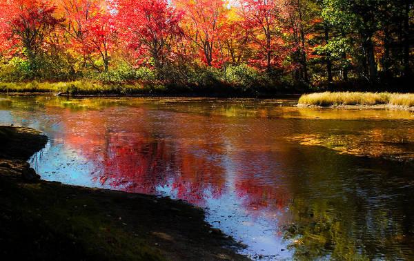 Wall Art - Photograph - When Autumn Flows by Karen Wiles