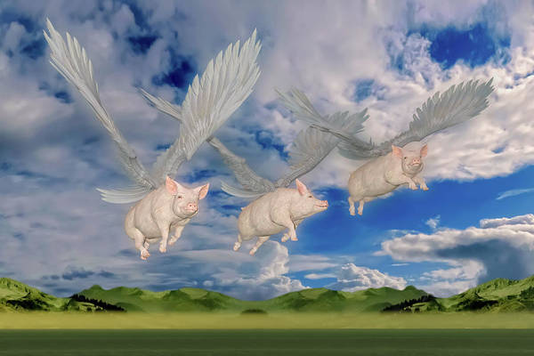 Wall Art - Digital Art - When Pigs Fly by Betsy Knapp