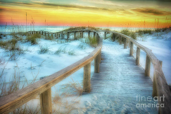 Photograph - Where The Path Leads by Ken Johnson