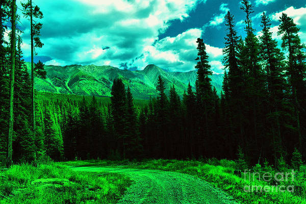Wall Art - Photograph - Where The Road Takes You  by Jeff Swan