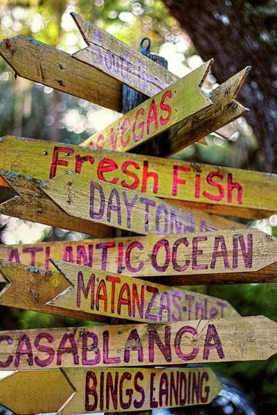 Photograph - Which Way To Go For Fresh Fish  by Carol Montoya