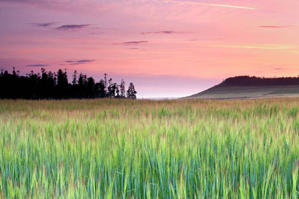 Whidbey Island Wall Art - Photograph - Whidbey Island Sunset by Richard W. Cooke Photography