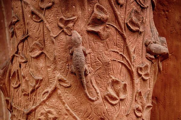 Photograph - Whimsical And Lifelike Carvings On Heidelberg Castle by Steve Estvanik