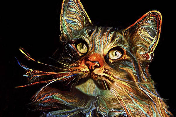 Digital Art - Whiskers The Maine Coon Cat by Peggy Collins
