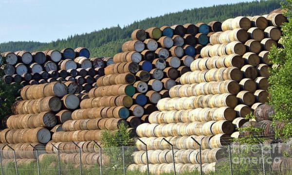 Photograph - Whisky Barrels by Liz Alderdice
