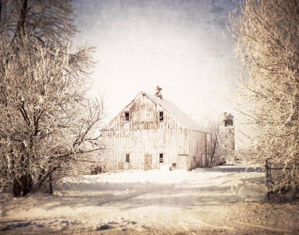Photograph - Calling Me Home by Julie Hamilton