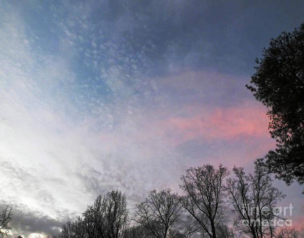 Photograph - Whitby 51 by Lizi Beard-Ward