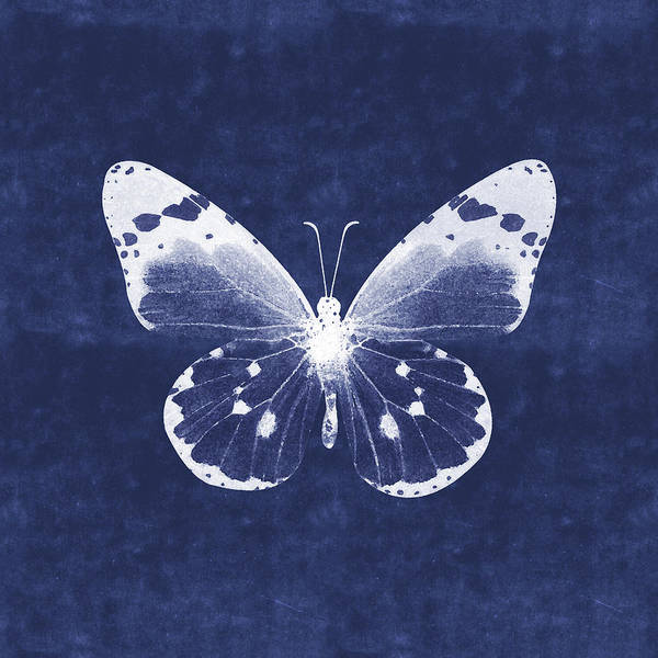 Wall Art - Mixed Media - White And Indigo Butterfly 1- Art By Linda Woods by Linda Woods