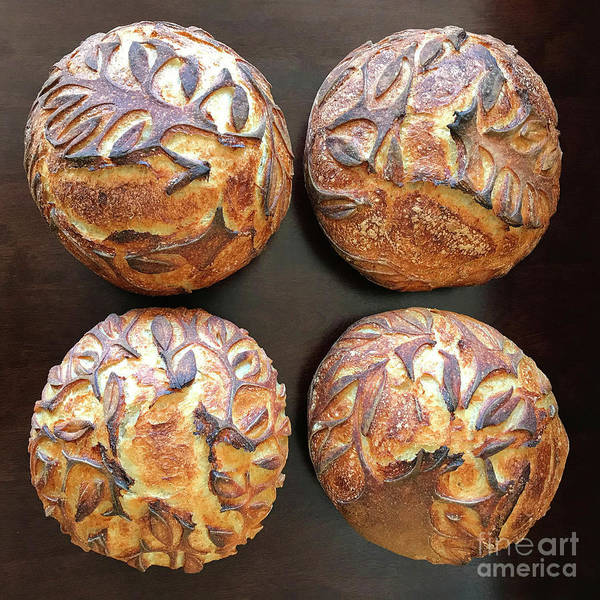 Photograph - White And Rye Sourdough With Leaf Motif 1 by Amy E Fraser
