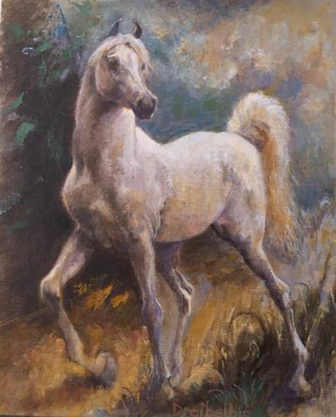 Painting - White Arabian by Ellen Dreibelbis