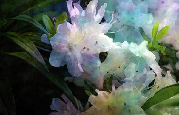 Photograph - White Azaleas 6511 Idp_2 by Steven Ward