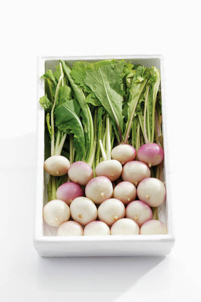 Tray Photograph - White Baby Turnips In Tray by Westend61