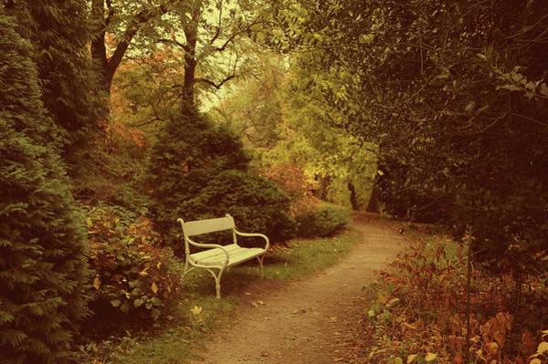 Photograph - White Bench In Secret Garden 3 by Jenny Rainbow