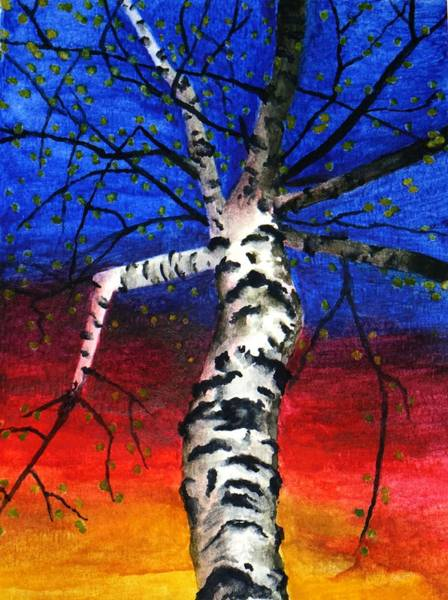 Painting - White Birch In Spring by Robert Morin