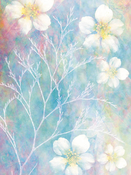 Beauty Of Nature Digital Art - White Blossoms & Plant by Don Bishop