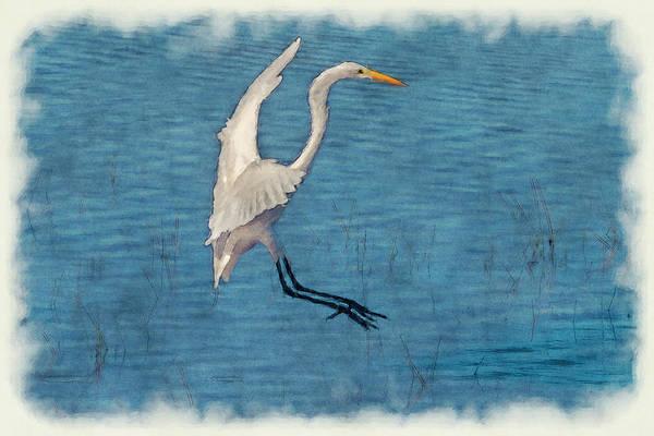Photograph - White Egret Landing -  Paintography by Dan Friend