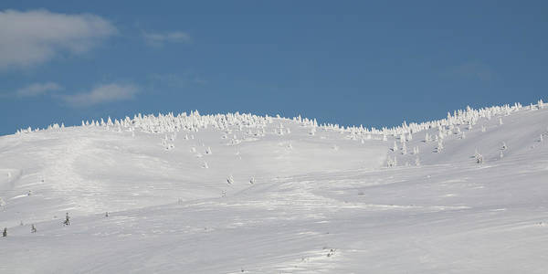 Photograph - White Hills Covered By Snow by Tatiana Travelways