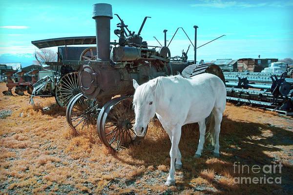 Photograph - White Horse Iron Horse by Martin Konopacki