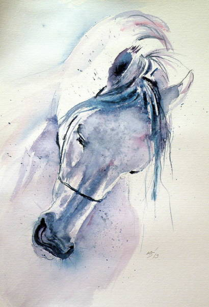 Wall Art - Painting - White Horse by Kovacs Anna Brigitta