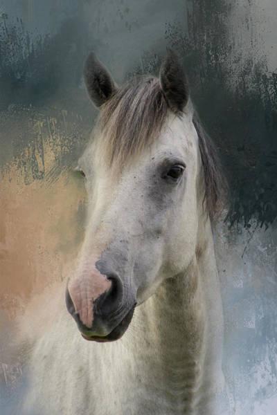 Wall Art - Digital Art - White Horse Painted by Terry Davis