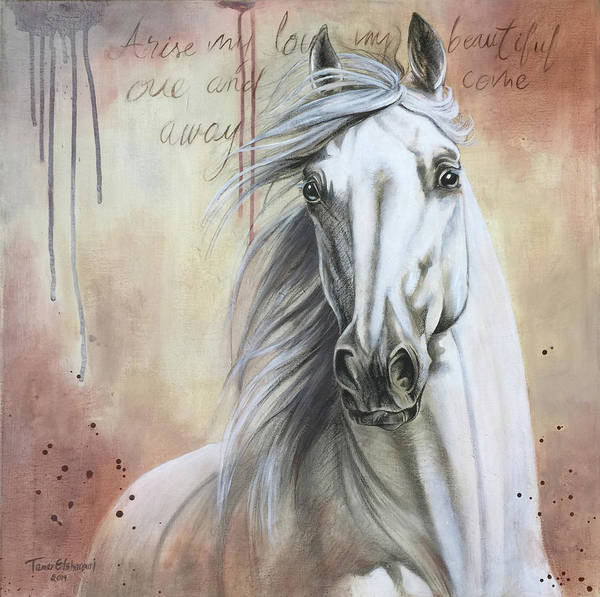Wall Art - Painting - White Horse by Tamer Elsharouni