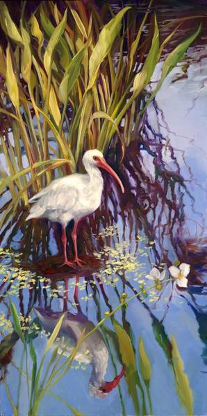 Ibis Painting - White Ibis Left by Laurie Snow Hein