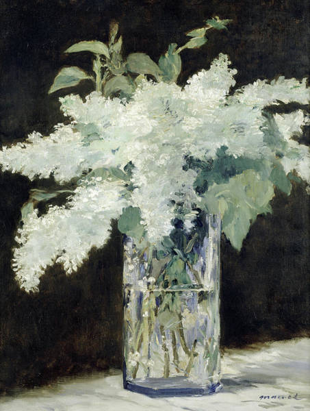 Wall Art - Painting - White Lilac, 1882 by Edouard Manet