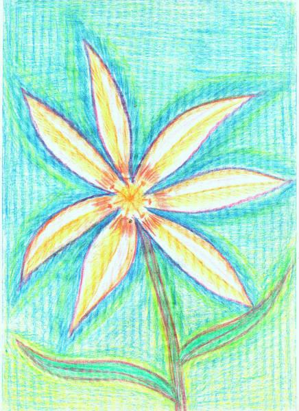 Drawing - White Lily by Irina Dobrotsvet
