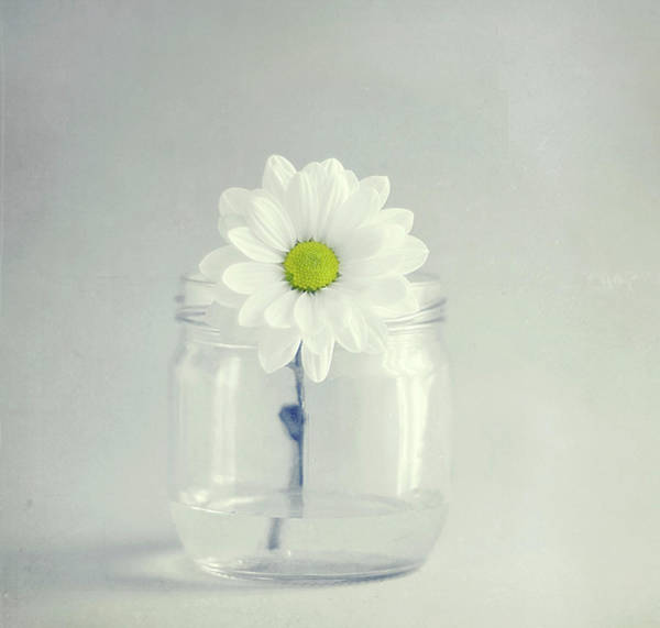 Jar Photograph - White Lower In Jar by C.aranega