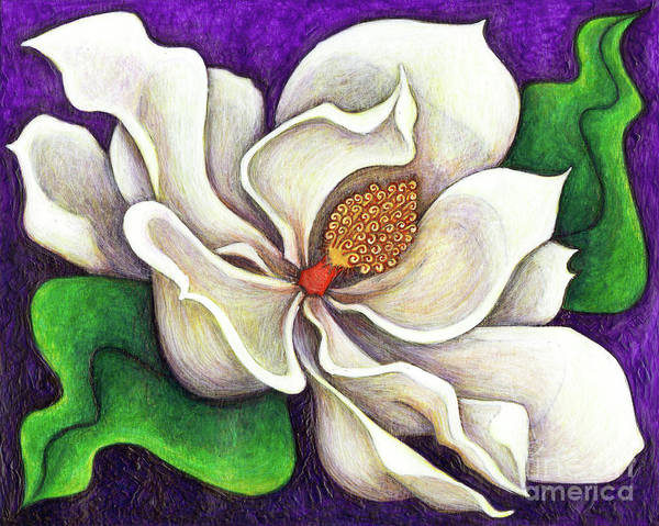 Painting - White Magnolia by Amy E Fraser