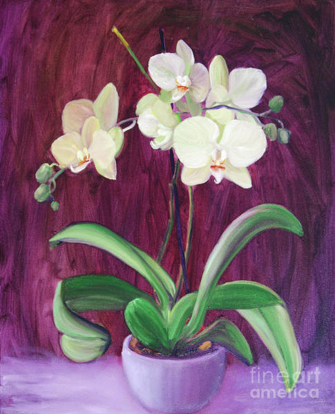 Wall Art - Painting - White Orchid On Purple by Frank Hoeffler
